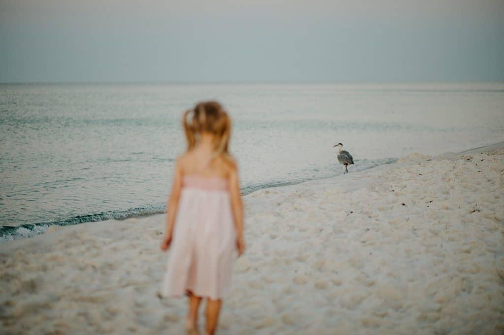 Gulf Shores Sunrise Photography 1